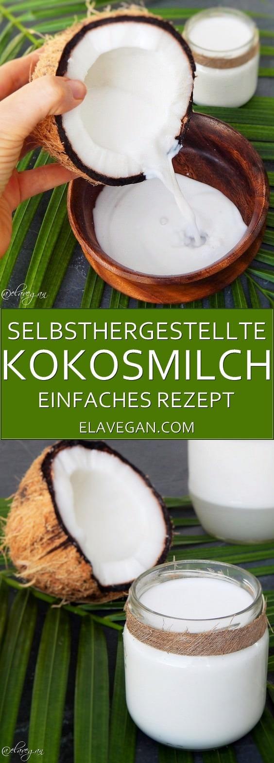 kokosmilch selber machen pinterest