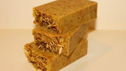 Homemade vegan beauty products calendula soap