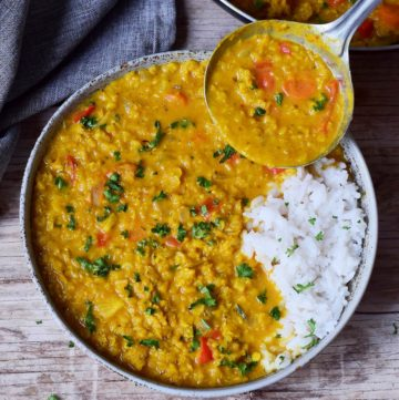 Red Lentil Dahl with rice in bowl with ladle