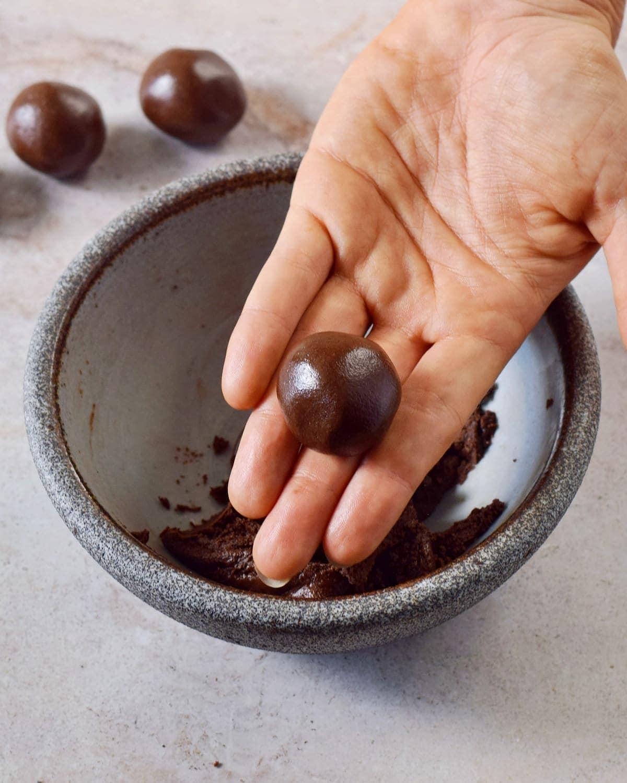 hand holding a chocolate truffle