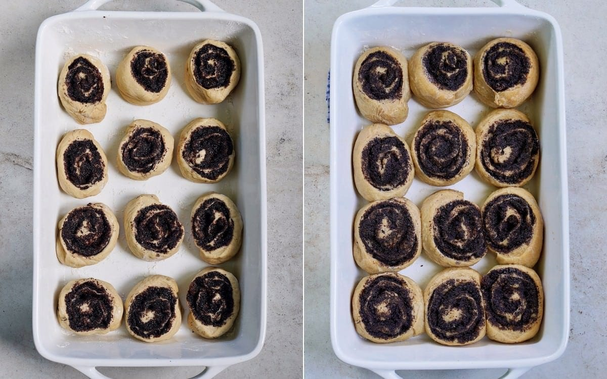 poppy seed rolls before and after baking